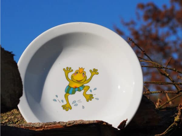 Gastronomierporzellan Scandia für Kindergärten Teller